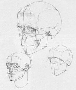 298x355 A Wonderful Book Die Gestalt Des Menschen By Gottfried Bammes