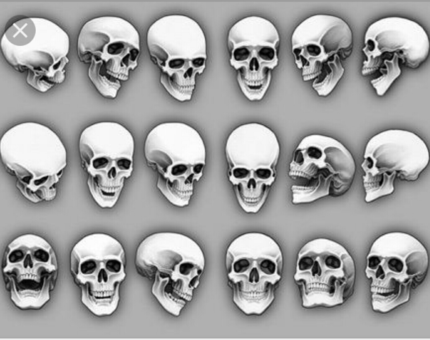 Human Skull Drawing Reference at GetDrawings.com | Free for personal ...