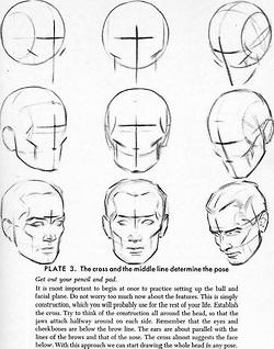 250x318 Drawing Art Head Draw Skull View Human Anatomy Turn Direction