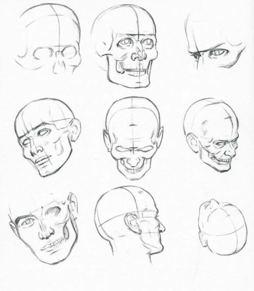 836x960 Pin By Hanna Wozniak On Anatomia Drawing Step