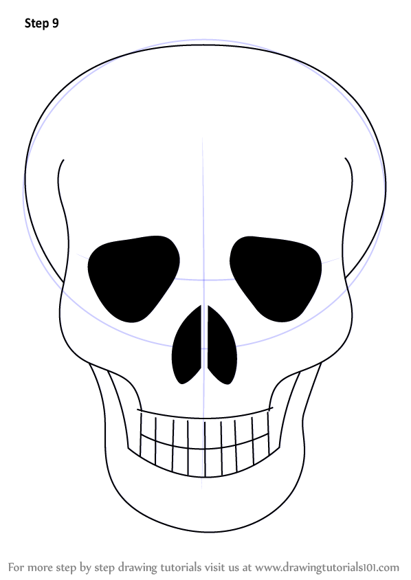598x844 Skull Is A Structure Of Human Head. It Is Very Easy To Draw It