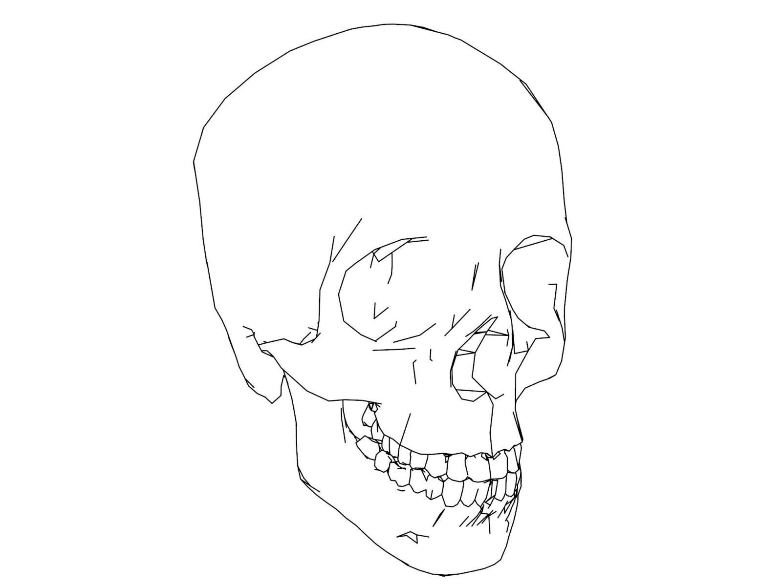1600x1200 How To Draw Anatomy Step Science Art Human Body