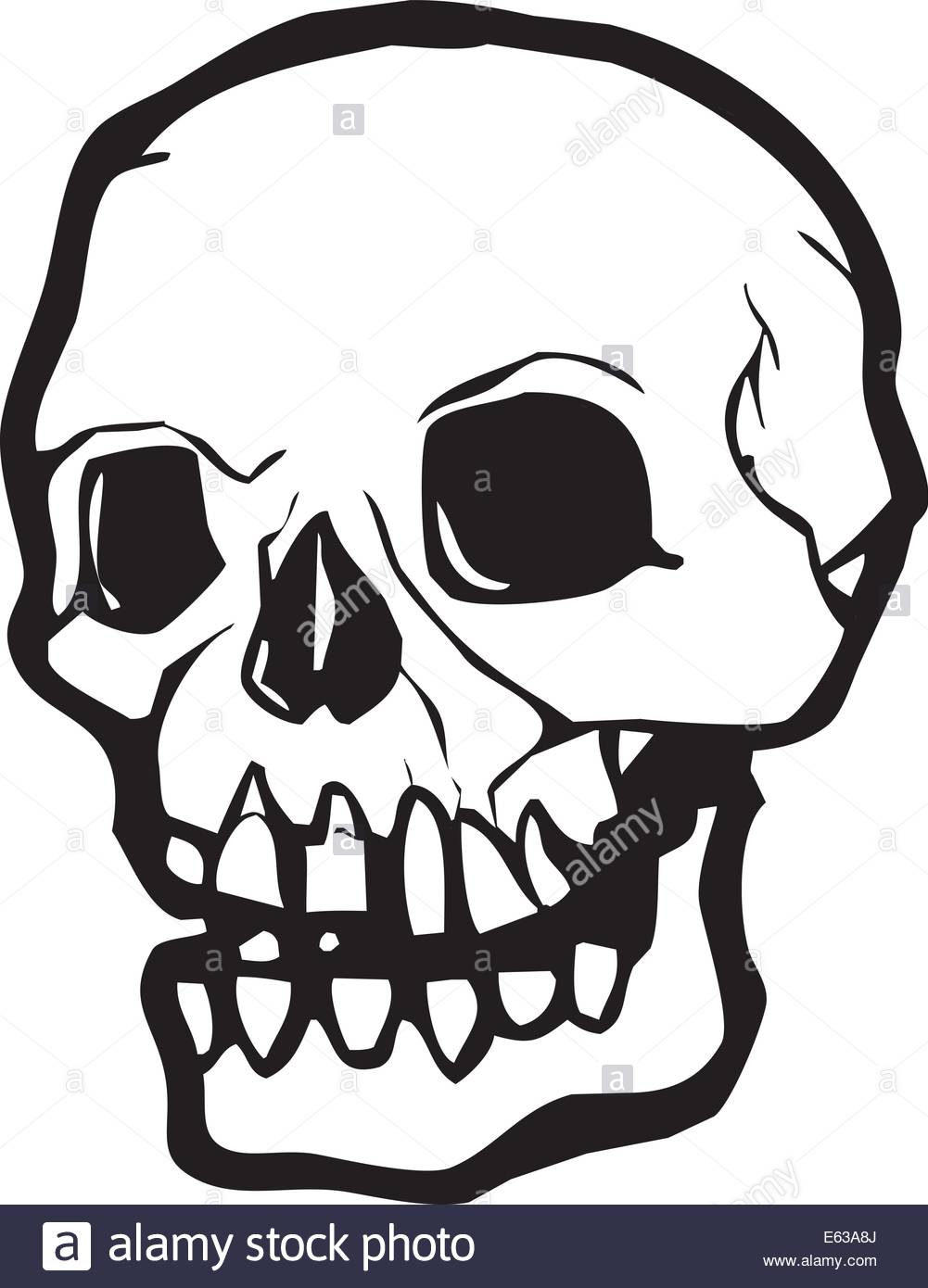1001x1390 Human Skull In Simple Vector Style In Black And White Stock Vector