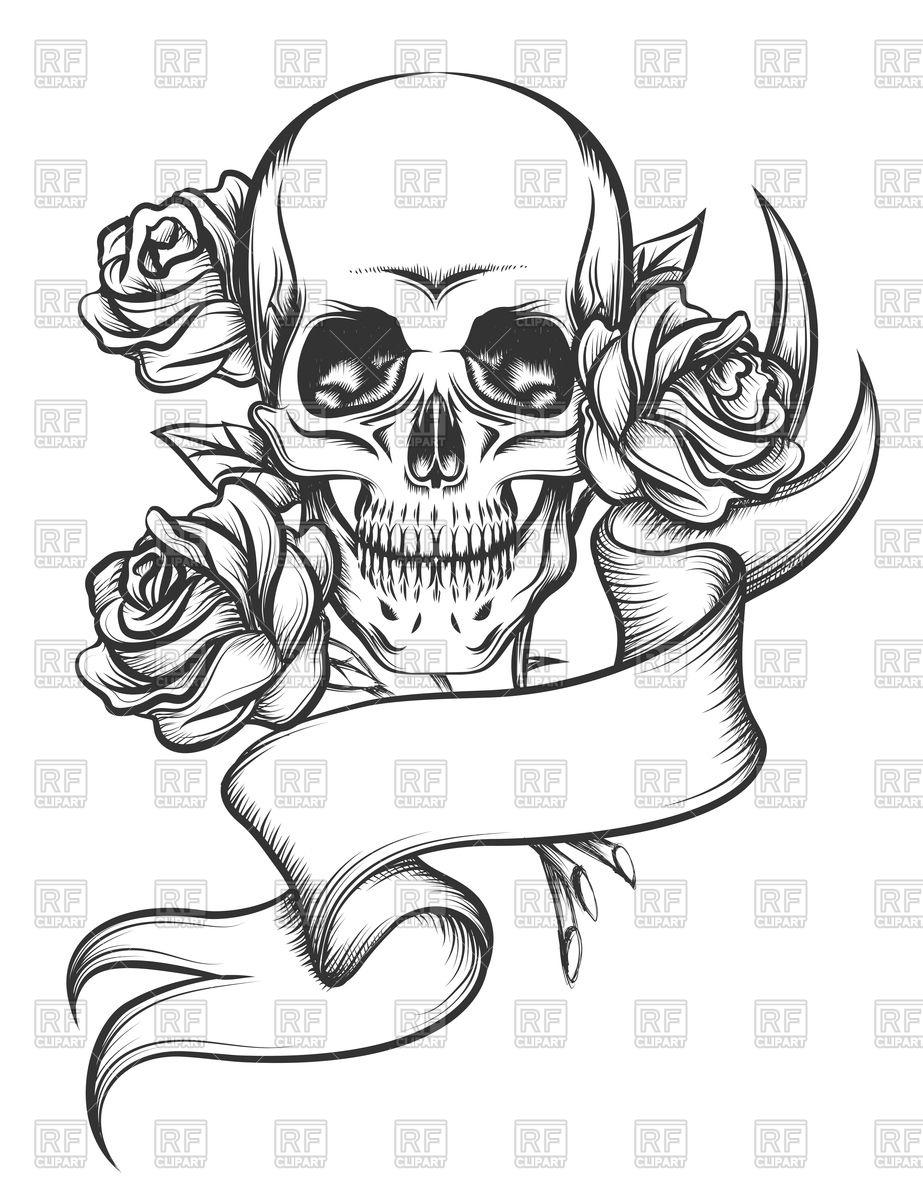 923x1200 Human Skull With Roses And Ribbon Royalty Free Vector Clip Art