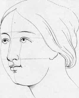 267x330 Portraiture Human Head Proportion