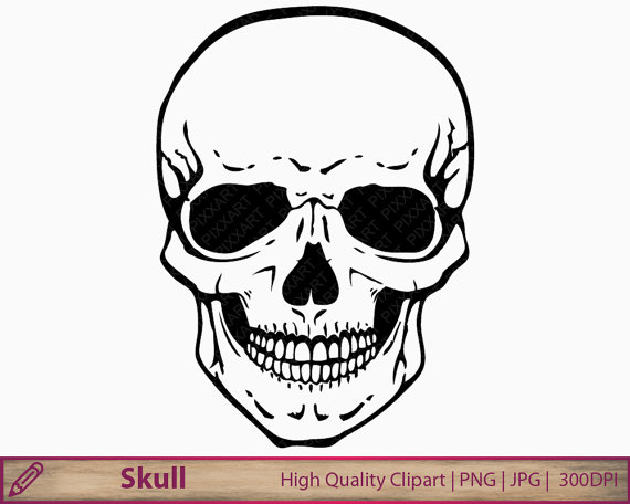 570x456 Skull Clipart Human Skull Clip Art Horror Halloween
