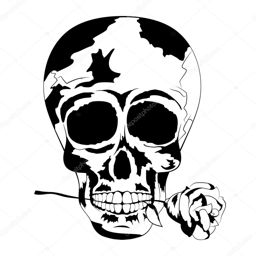 1024x1024 Black And White Human Skull With Rose In The Mouth. Tattoo Skull