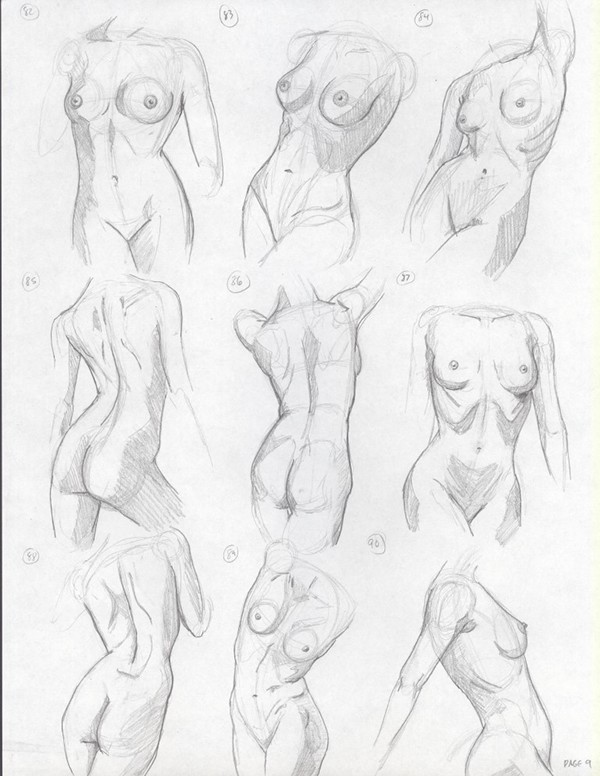 Human Torso Drawing
