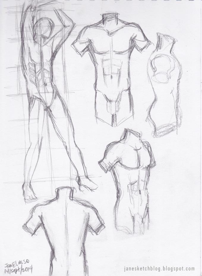 680x931 Dibujo De Torso Masculino