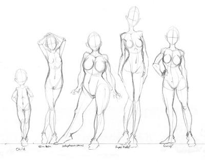 400x315 Human Female Torso Anatomy Drawing