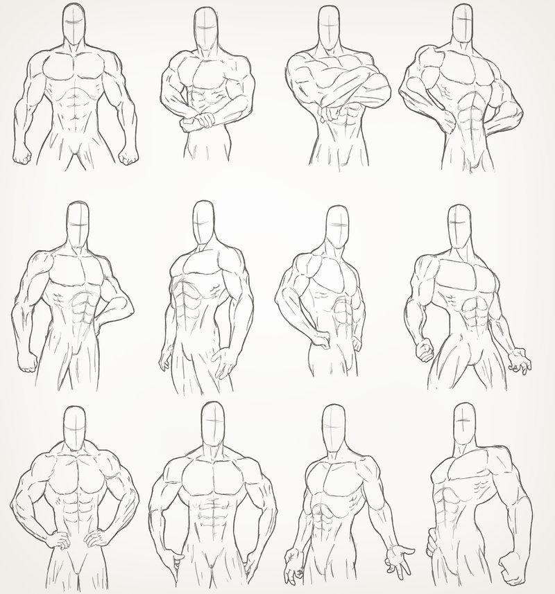 800x857 Male Torso Drawings 2007 By Juggertha