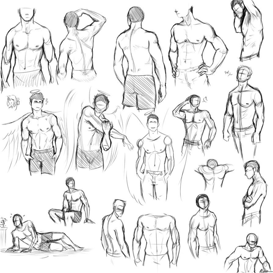 Human Torso Drawing at GetDrawings.com | Free for personal use Human ...
