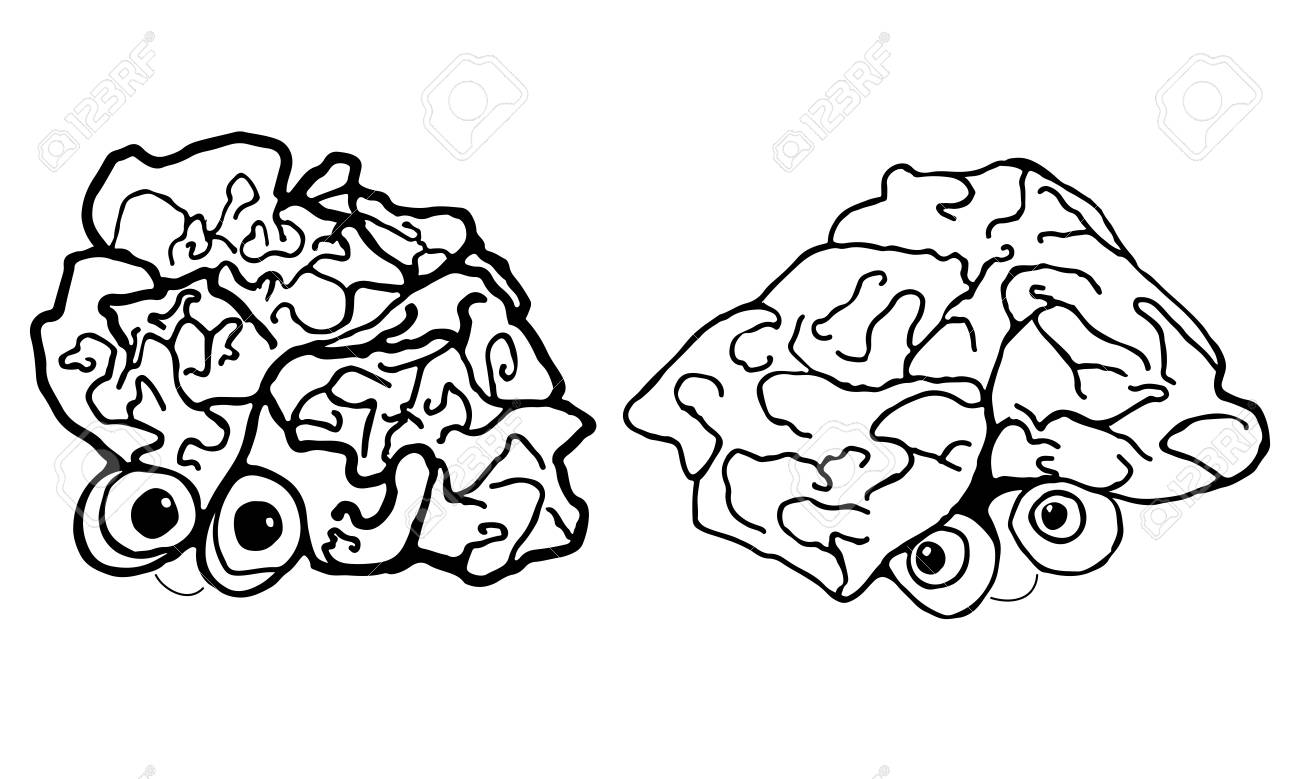 1300x779 Two Funny, Cartoon, Human Brain, Isolated On White Background