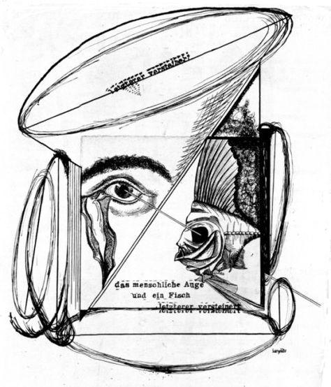 474x554 Johannes Baargled, The Human Eye And A Fish, The Latter Petrified