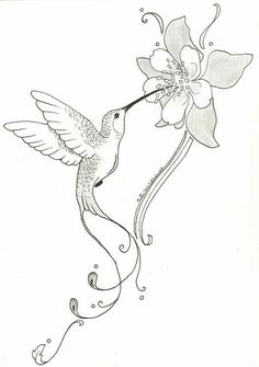 236x335 Stylized Drawing Of A Hummingbird Drinking From Flowers. Pencil