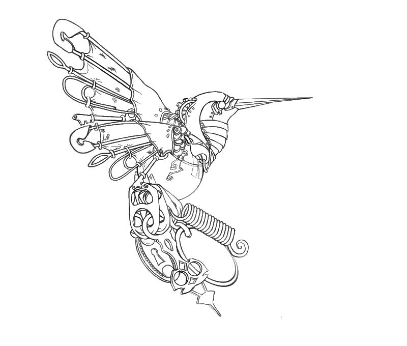 800x680 Drawn Hummingbird Mechanical Art