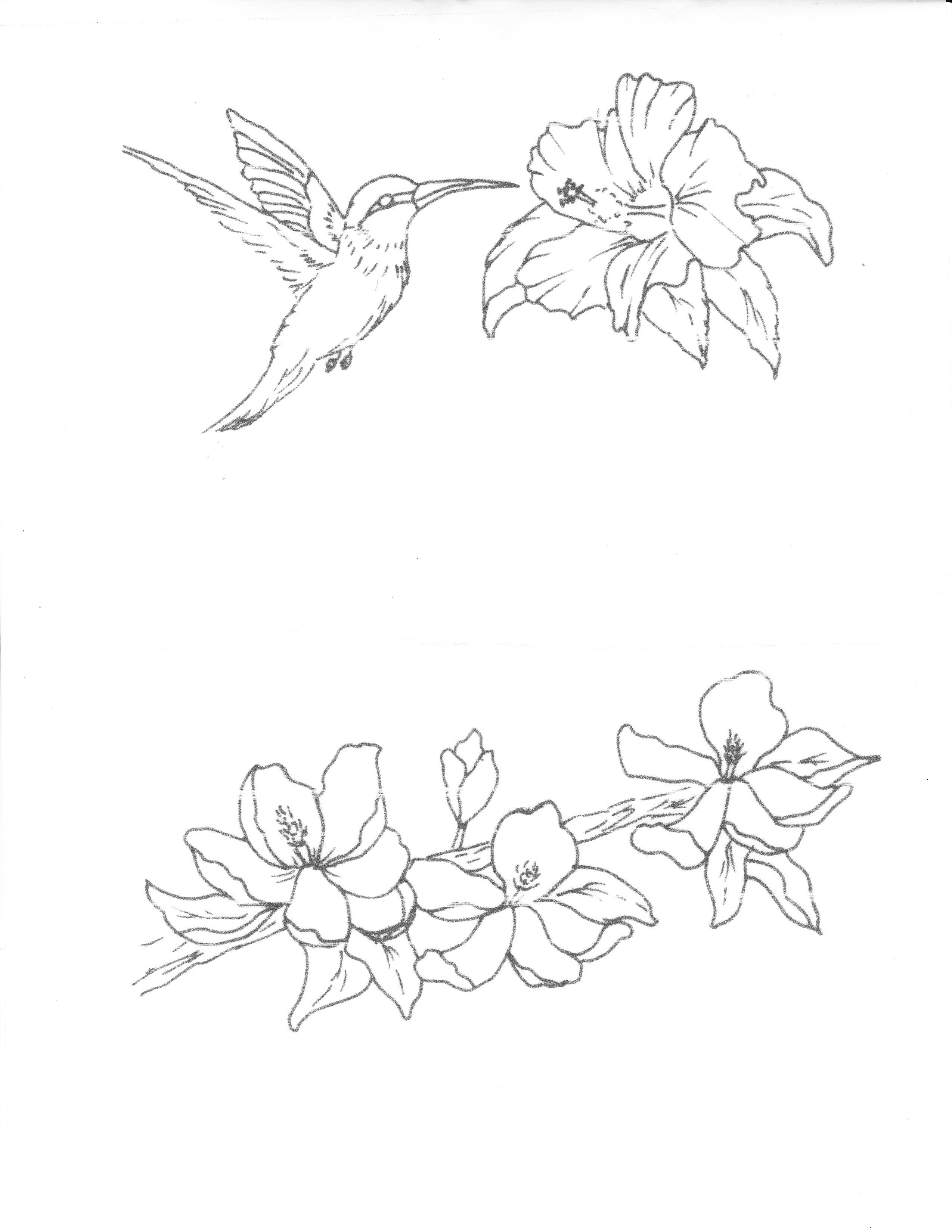 2549x3299 Drawings Of Hummingbirds And Flowers Hummingbird And Flower
