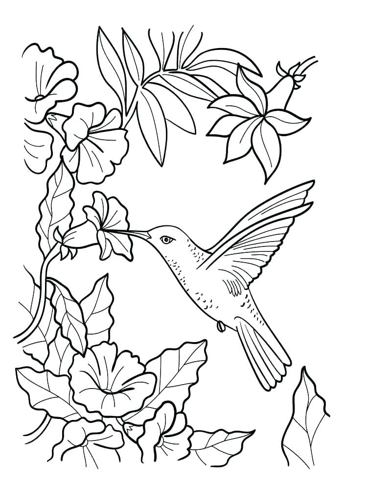 750x1000 Flower Bouquet Coloring Pages Synthesis.site