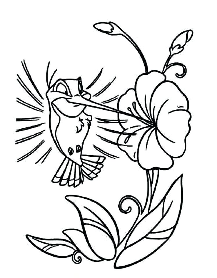 748x960 Coloring Pages Of Hummingbirds Hummingbird Coloring Pages Coloring