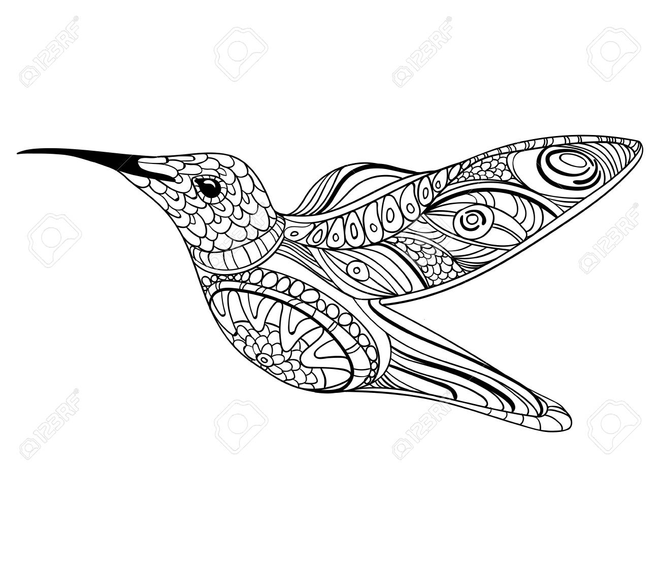 1300x1125 Vector Illustration Of A Hummingbird. Drawing With Ornaments