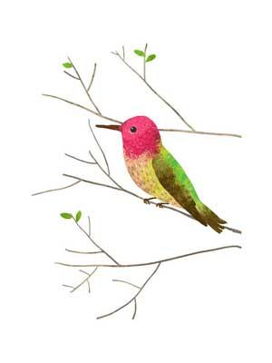 300x400 Hummingbird Art.