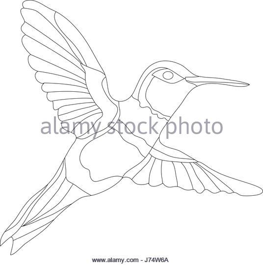 536x540 Hummingbird Cartoon Vector Illustration Stock Photos Amp Hummingbird