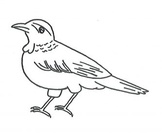 333x289 Hummingbird Clipart Clipartpen