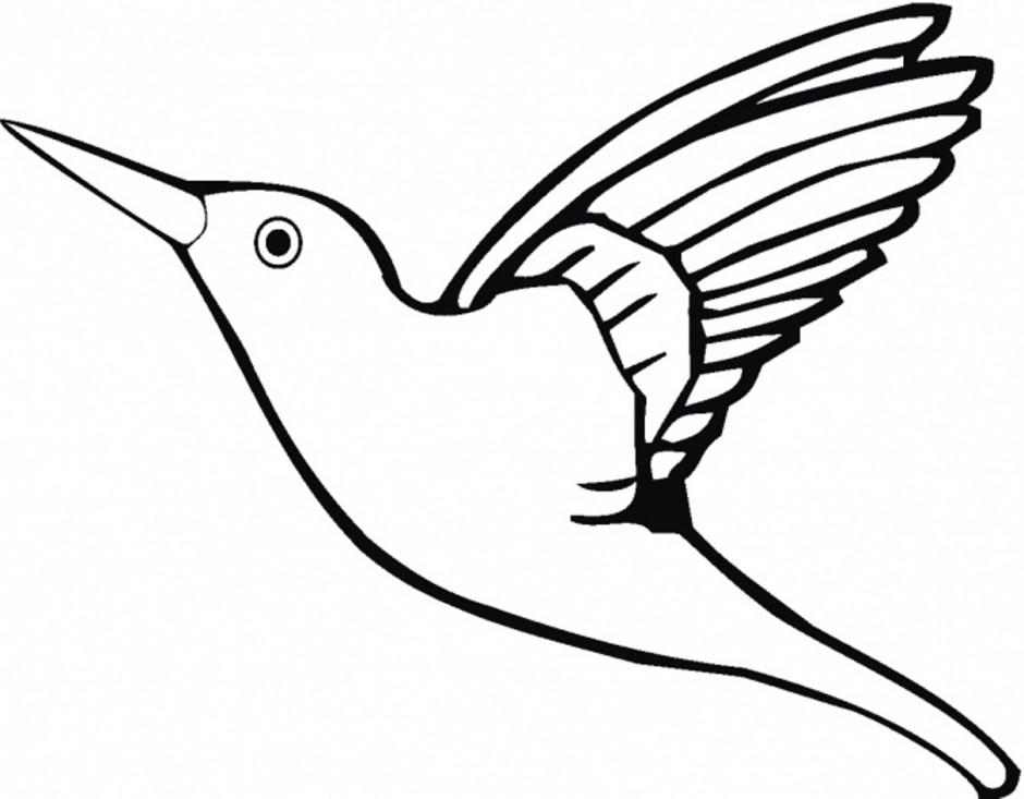 940x733 Hummingbird Coloring Page 433333