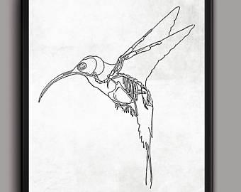 340x270 Hummingbird Sketch Etsy