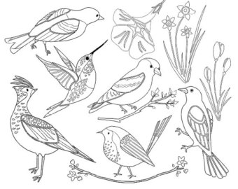 340x270 Bird Clip Art, Hummingbird Clip Art, Spring Birds, Spring Clipart