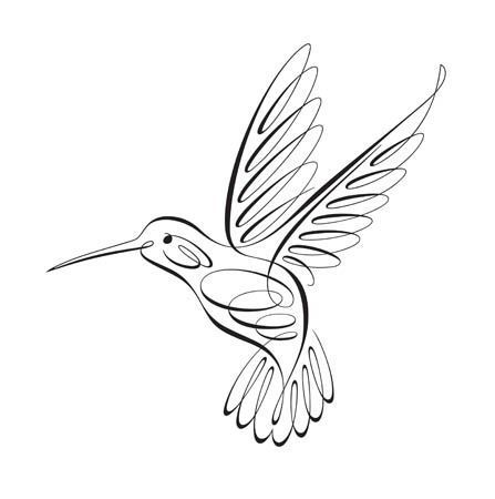Hummingbird Drawing Easy