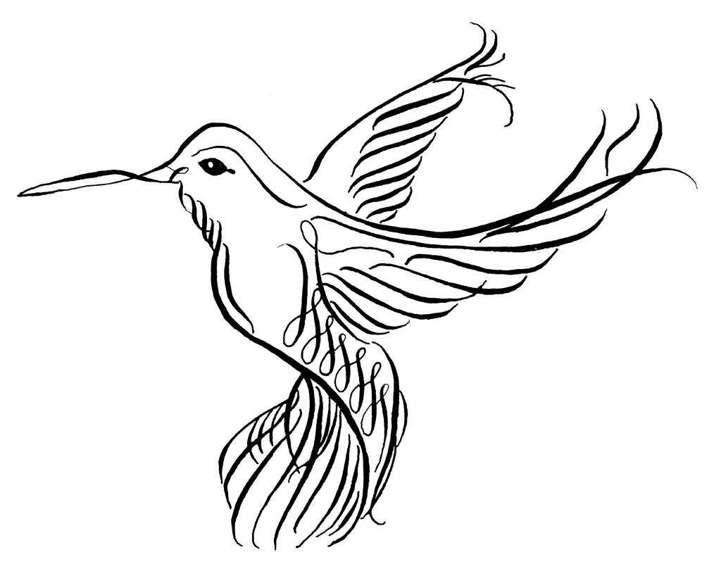 1024x818 Hummingbird Drawings Clip Art