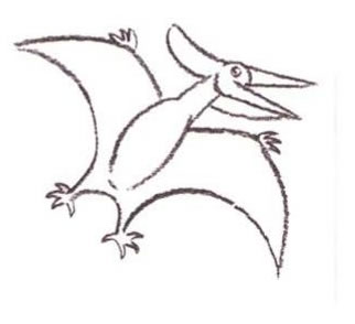 322x294 How To Draw How To Draw A Pteranodon