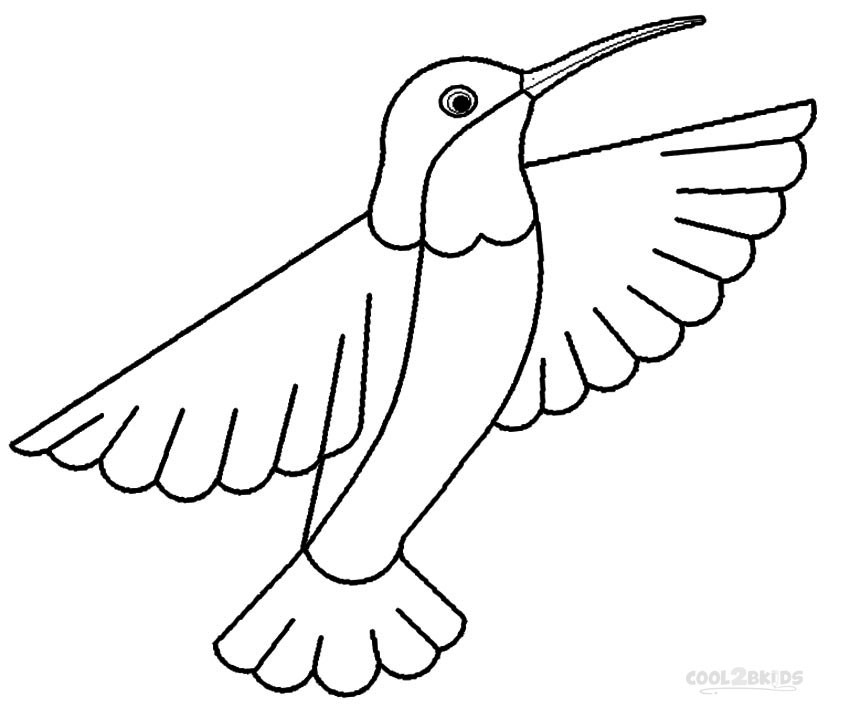 850x718 Hummingbird Coloring Pictures