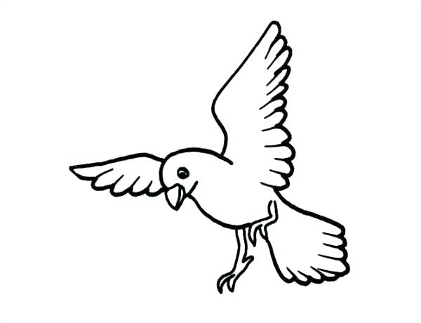 600x460 Simple Hummingbird Coloring Page Fee Cute Bird Pages Flying