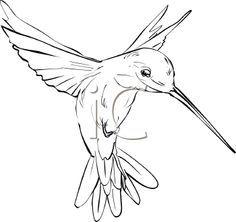 236x222 Simple Hummingbird Outline Tattoo Idea More Hummingbird Tattoo