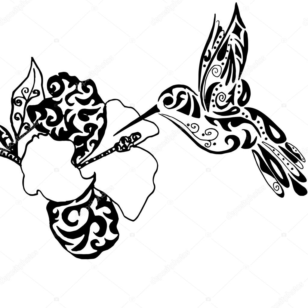 1024x1024 Hiqh Qualiti Hummingbird And Orchid For Coloring Or Tattoo Isol