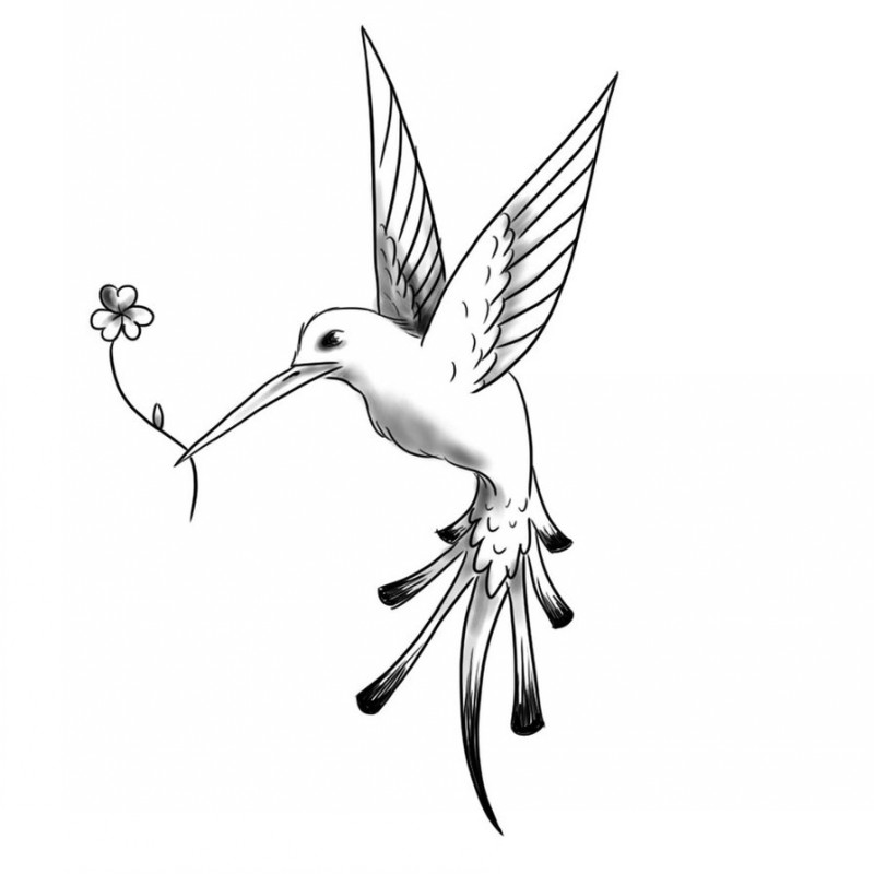 800x800 Tattoo White Flying Hummingbird With Flower