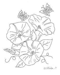 236x292 Drawn Hummingbird Morning Glory Flower