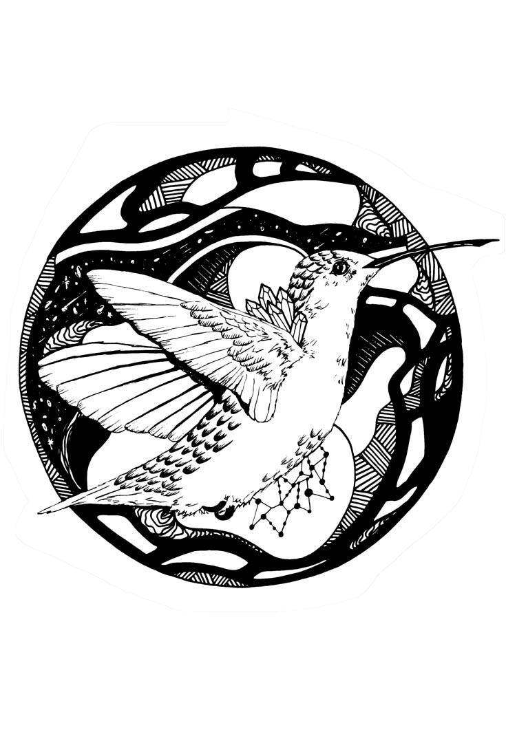 735x1080 Hummingbird Artwork The Most Beautiful Hummingbird Art Kenalsworld