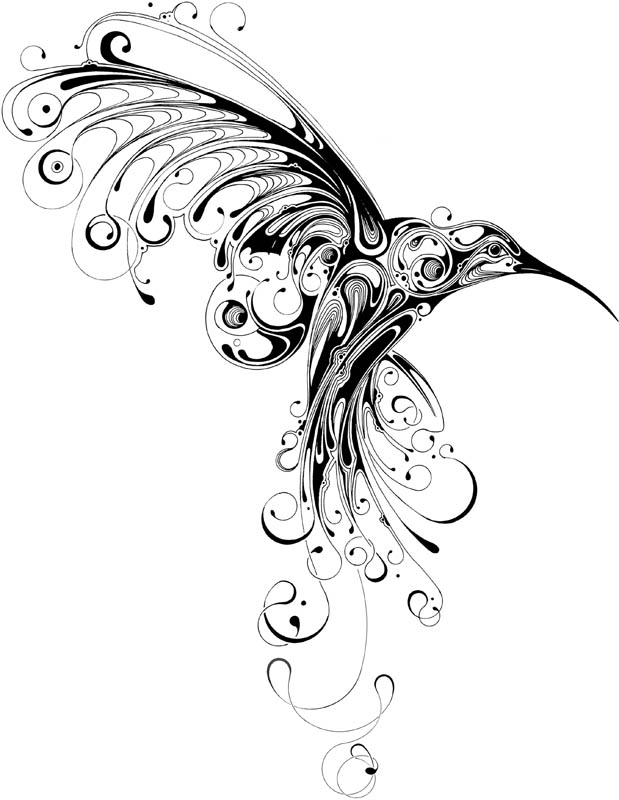 619x800 Collection Of Hummingbird Tattoo Sketch