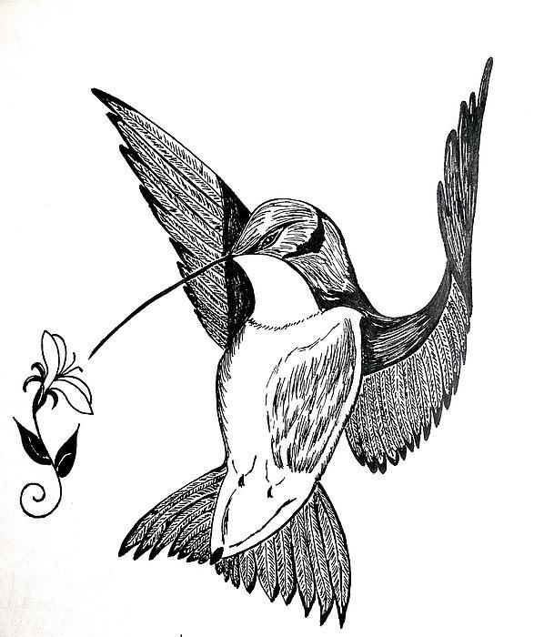 598x700 Hummingbird Greeting Card For Sale By Nancy Rucker