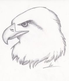236x276 Pictures Easy Sketches Of Eagles,