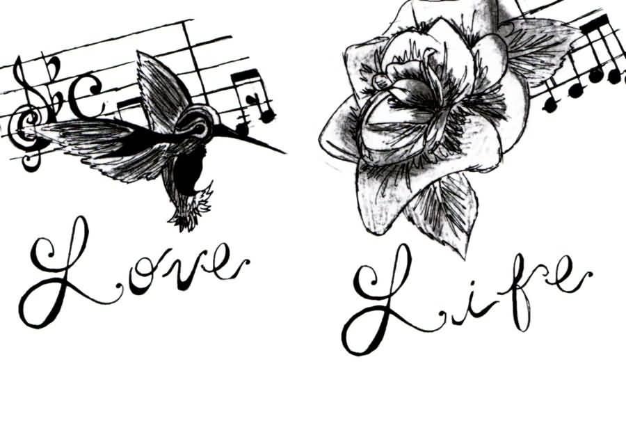 900x615 Different Type Of Hummingbird Tattoo Graphic Design