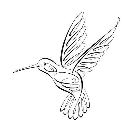 447x450 Fine Line Hummingbird Tattoo Design Hummingbird, Outlines