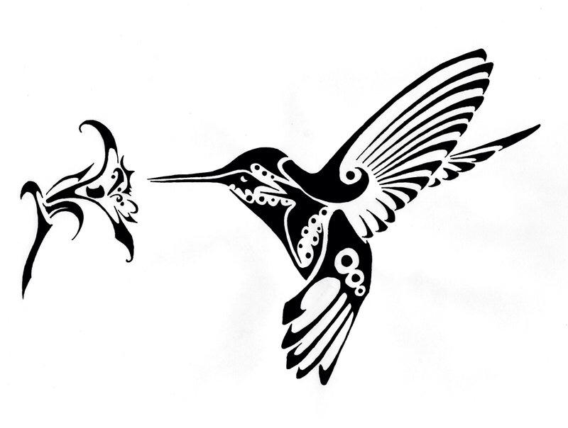 800x604 Hummingbird Tattoo Idea
