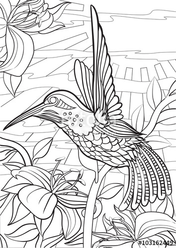 354x500 Adult Coloring Book Illustration. Tattoo Set Hummingbird