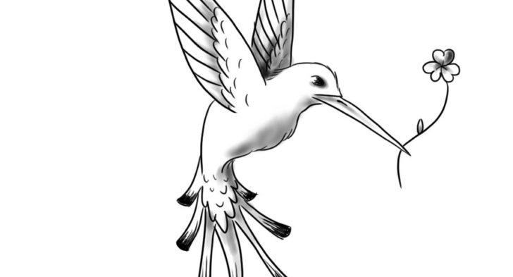 728x393 Black And Grey Hummingbird Tattoo 38 Hummingbird Tattoo Designs