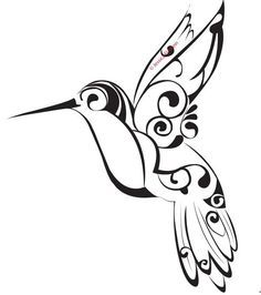 236x266 13 Best Drawings Of Jamaican Humming Bird Images