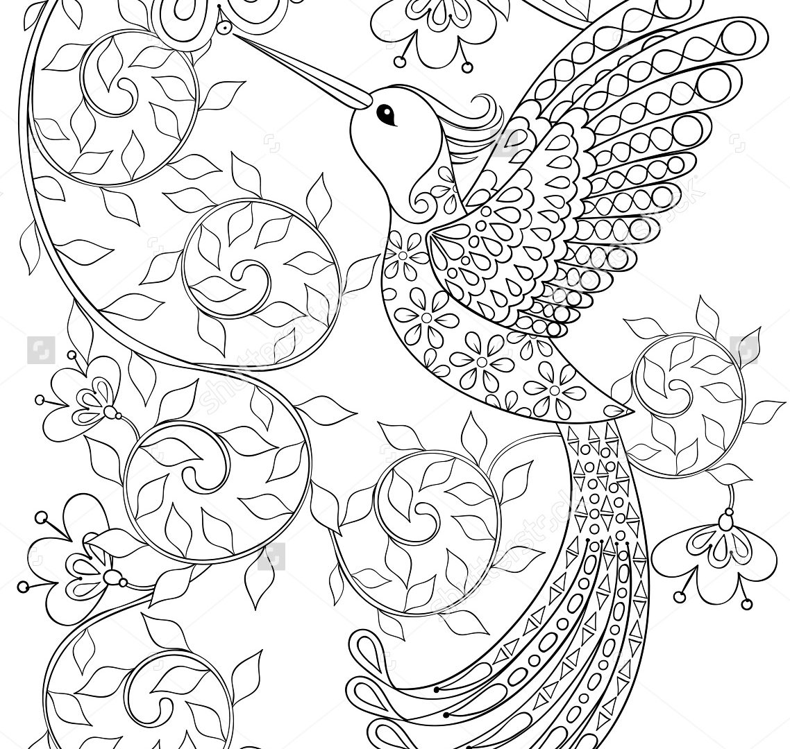 Hummingbirds And Flowers Drawing at GetDrawings Free